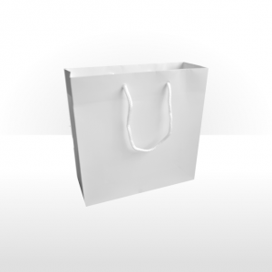 Medium White Paper Bag