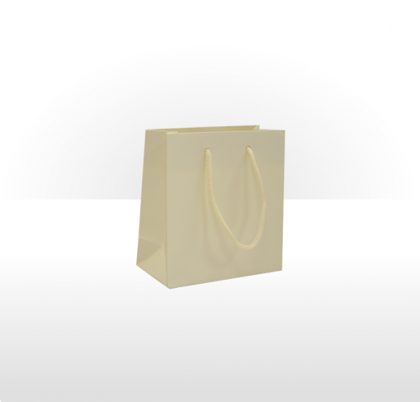 Small Ivory Paper Bag