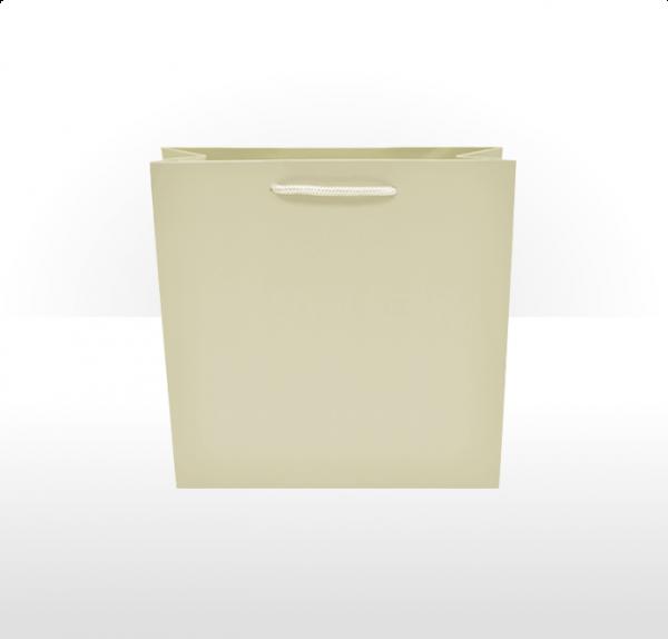 Medium Ivory Paper Bag