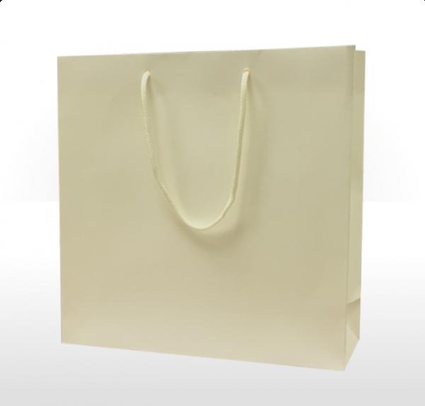 Large Ivory Paper Bag