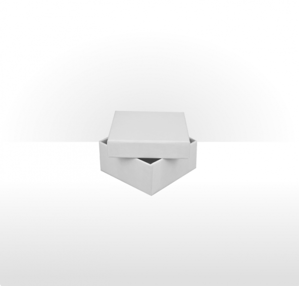 Small White Gift Box with Polywadding Insert